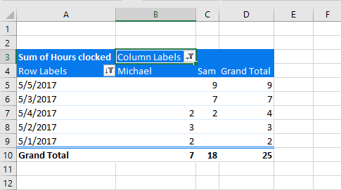 Screenshot: Filtered Pivot Table