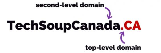 Domain Names 101: Why They Matter for Nonprofits | TechSoup
