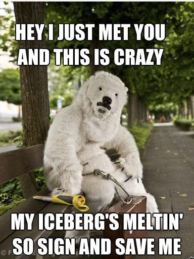 Hey I just met you and this is crazy; but my iceberg's melting so sign and save me